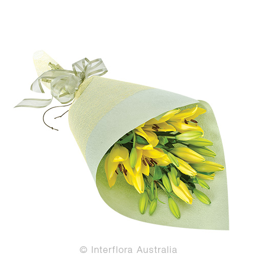 Piper - Wrapped non fragrant lilies choose 'premium' for twice as many, select pink, white, orange or yellow - Anniversary / Romance,Birthday / Congratulations,Sympathy / Funerals,Get Well